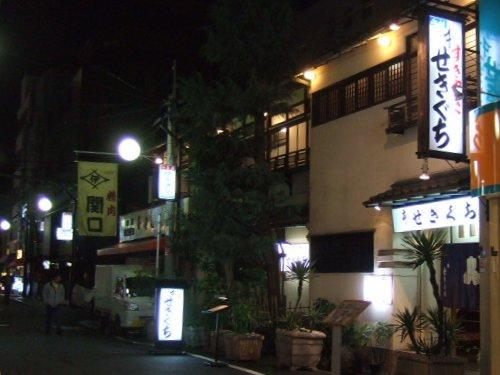 2008_03080003