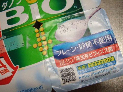 2008_04140004