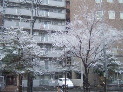 2009_01240012