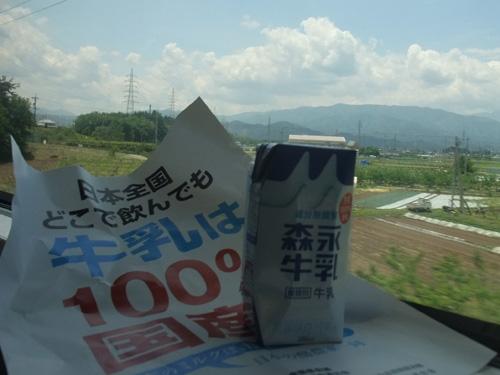 2010_06010011