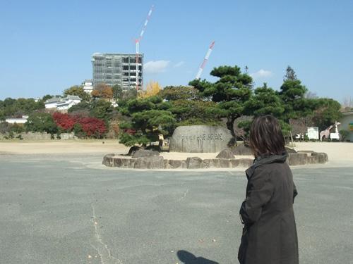 2010_11290009