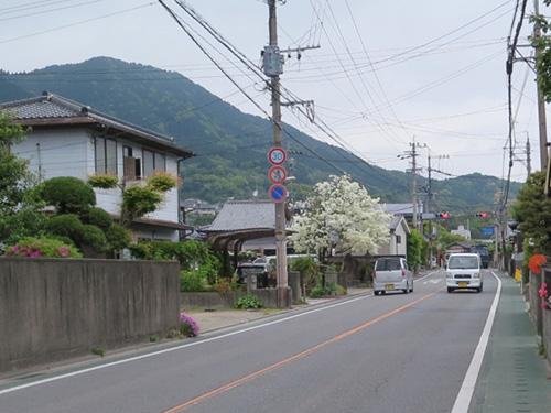 2014430_3